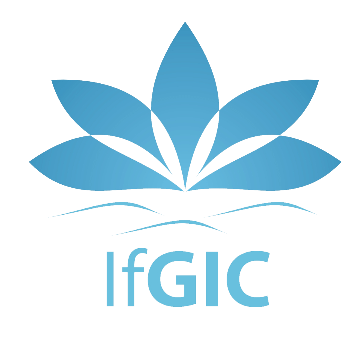 Institute for Global Integral Competence